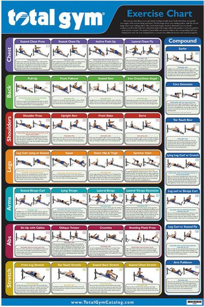 this exercise chart shows you all of the different exercises that