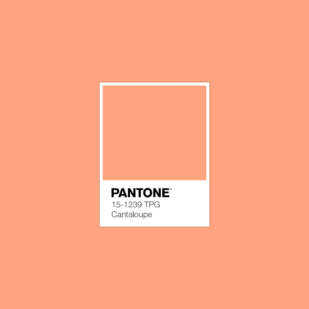 C A N T A L O U P E Pantone Colour Palettes Pantone Color Pantone Check out inspiring examples of cantelope artwork on deviantart, and get inspired by our community of talented artists. pantone colour palettes pantone color
