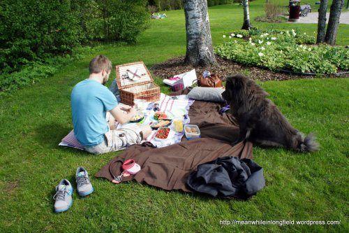 piknik espoo/kauniainen