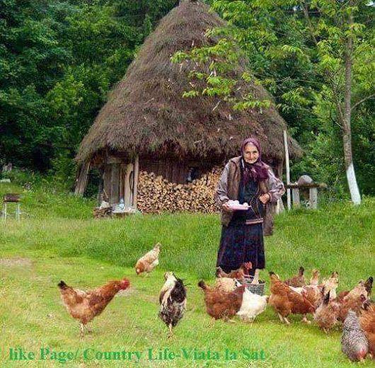 Viața la tara .!!!! | Viață la țară, Natură, Romani