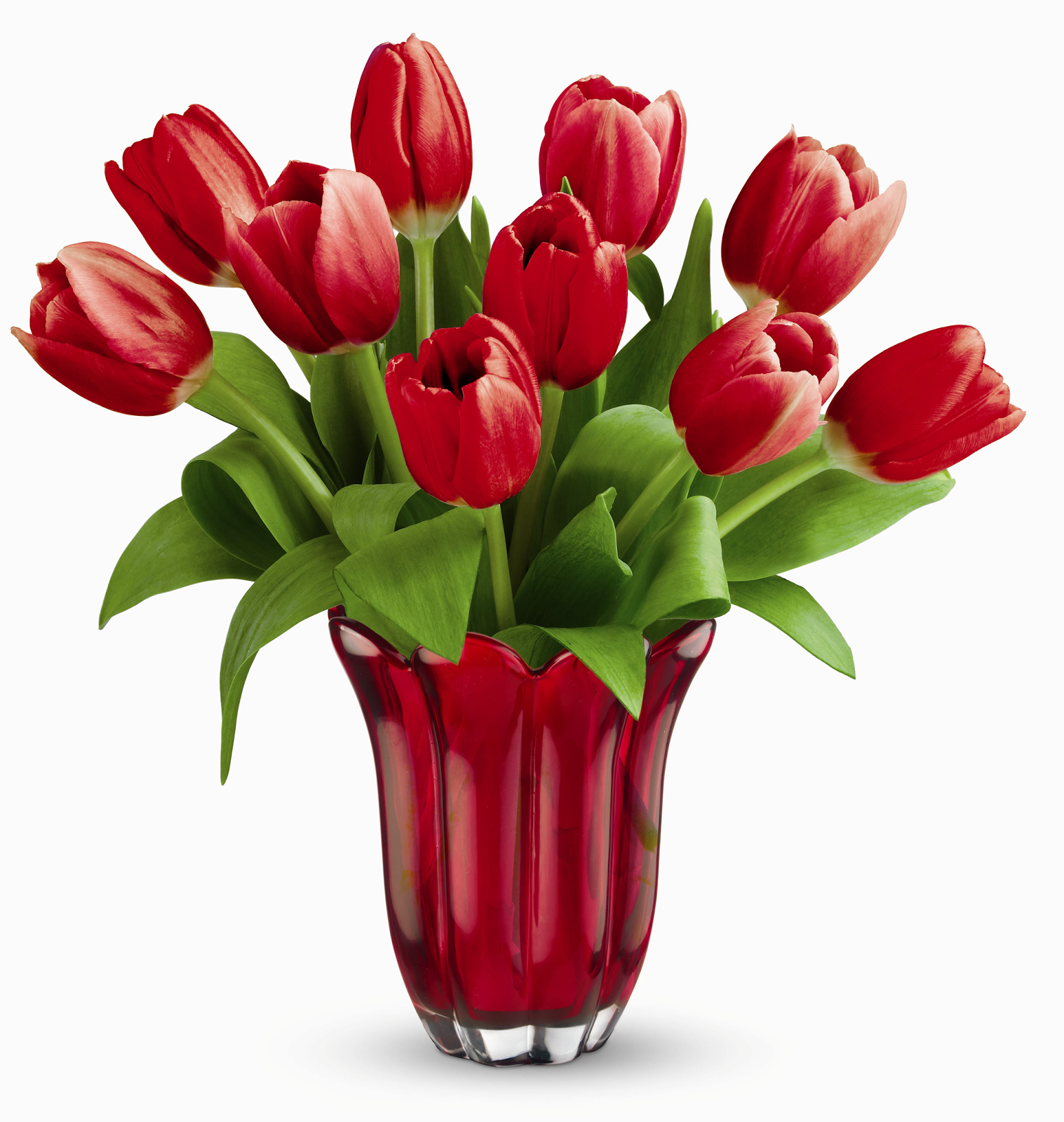 Tulip Wallpaper: Teleflora Kissed By Tulips Bouquet