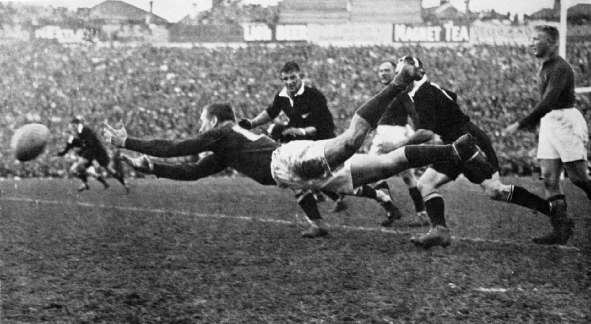 Image result for rugby history