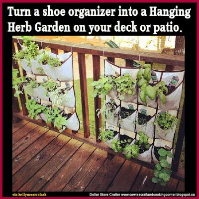 Diy Herb Garden With Images Diy Herb Garden Hanging Herb