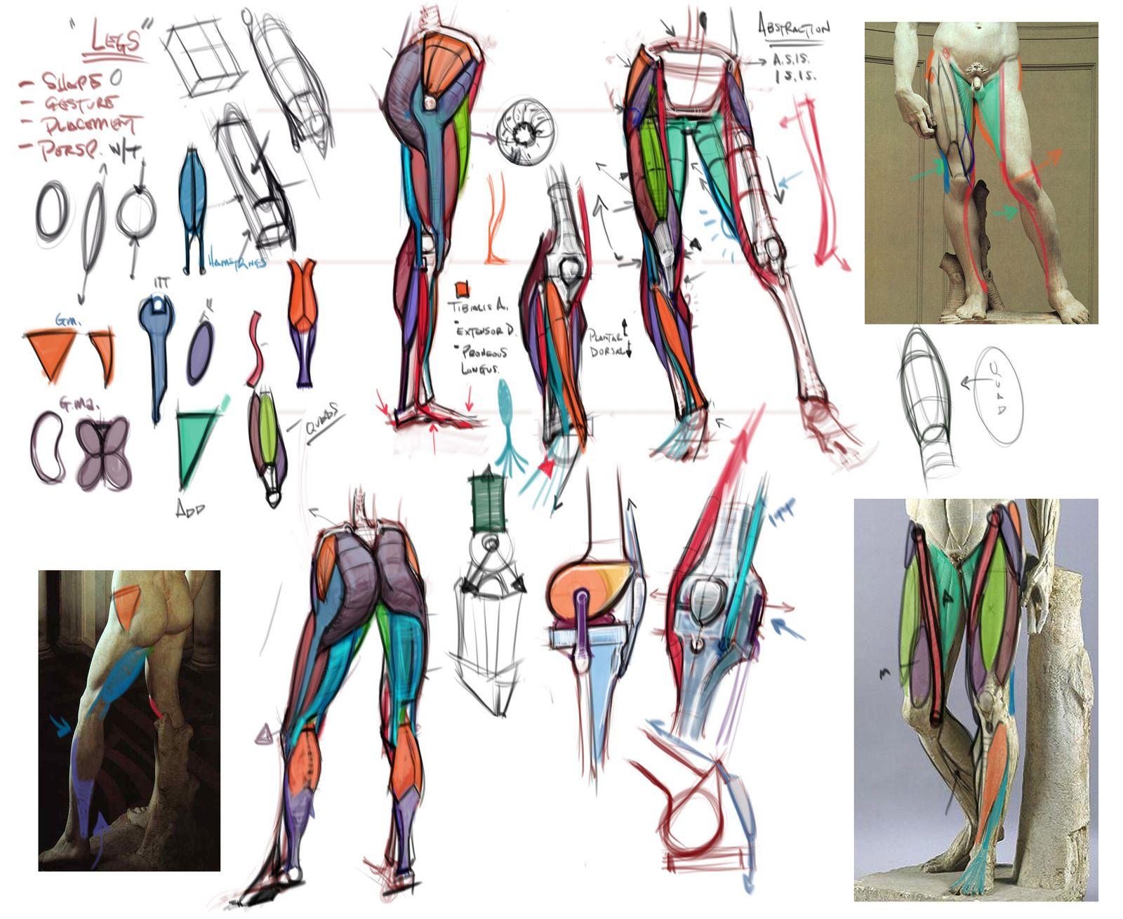 Lecture Notes on the leg by mhampton - Michael Hampton - CGHUB via PinCG.com