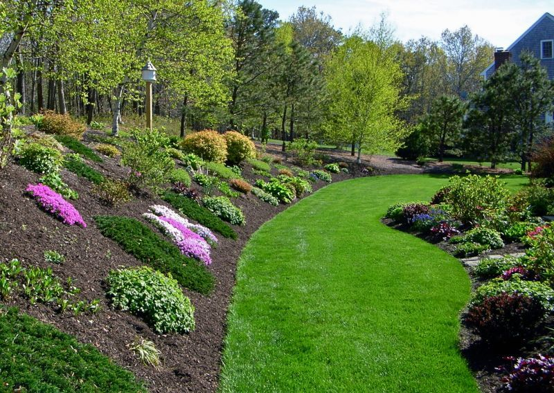 planting ideas for a hill side gardening with flowers
