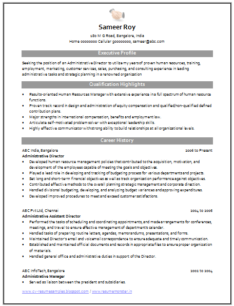 Professional Curriculum Vitae  Resume Template For All Job