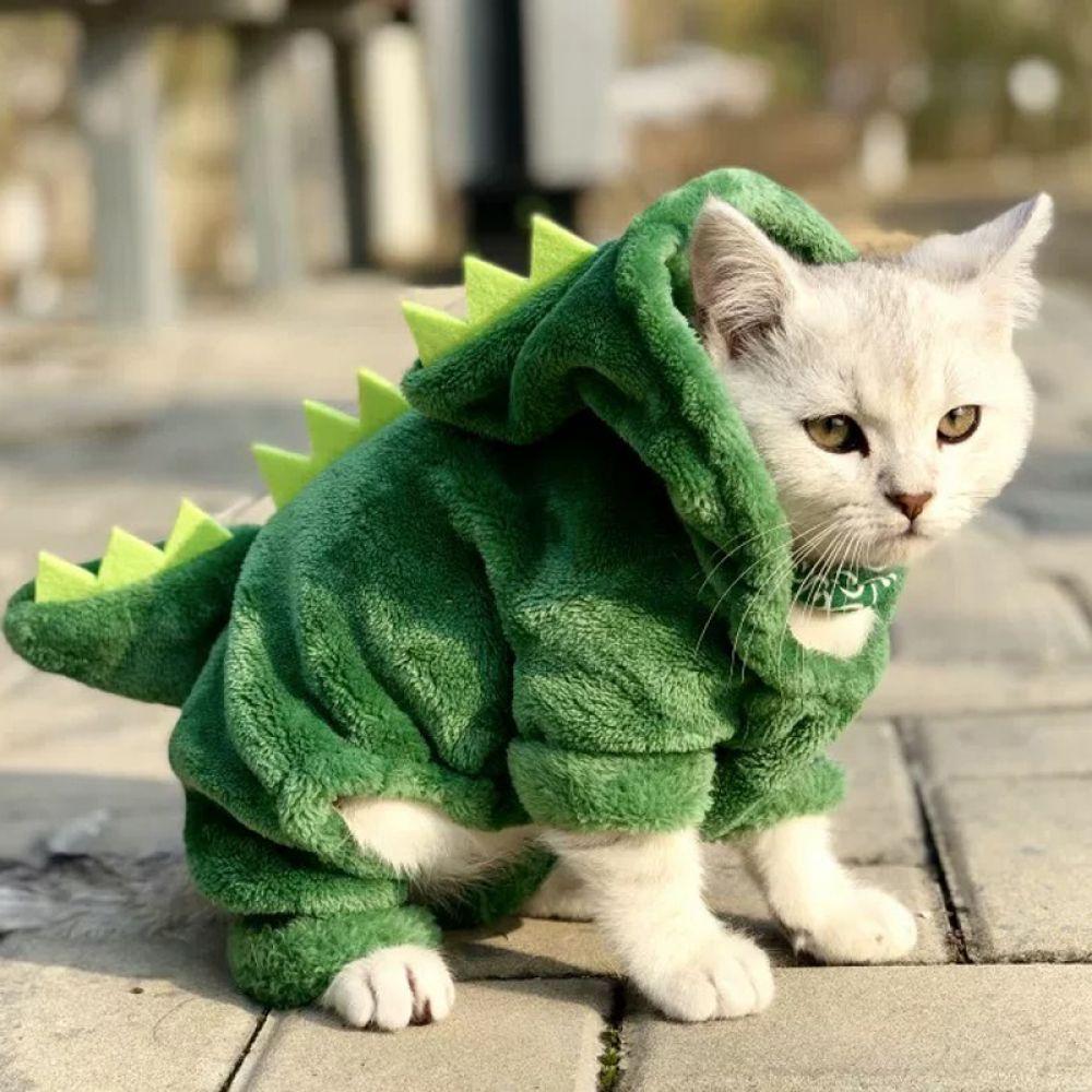 Costume Funny Pet For Pet V 2020 G Koshachya Odezhda Kostyum