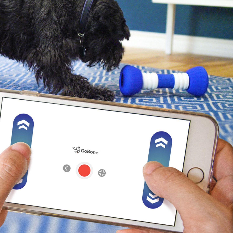 Info's : GoBone // Interactive Dog Toy