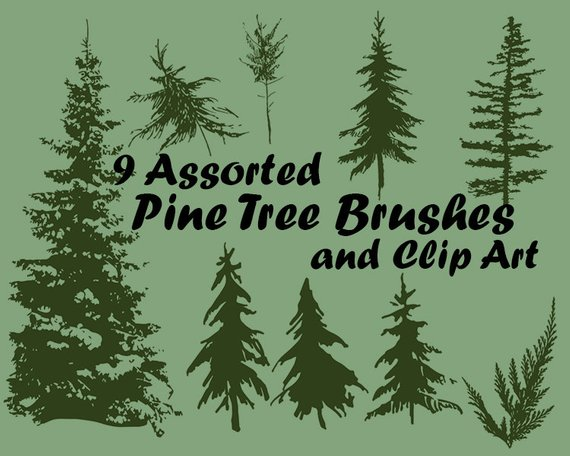 9 Assorted Pine Tree Photoshop Brushes Abr And Clip Art Etsy In 2020 Tree Photoshop Photoshop Brushes Photoshop