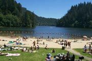 Loon Lake Recreation Site Or Lakeside Camping Oregon Camping Oregon Swimming