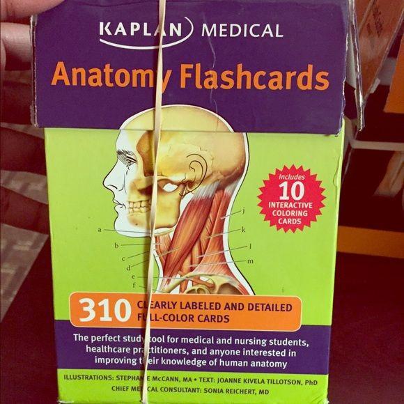 Human anatomy flash cards | Human anatomy, Anatomy and Customer support