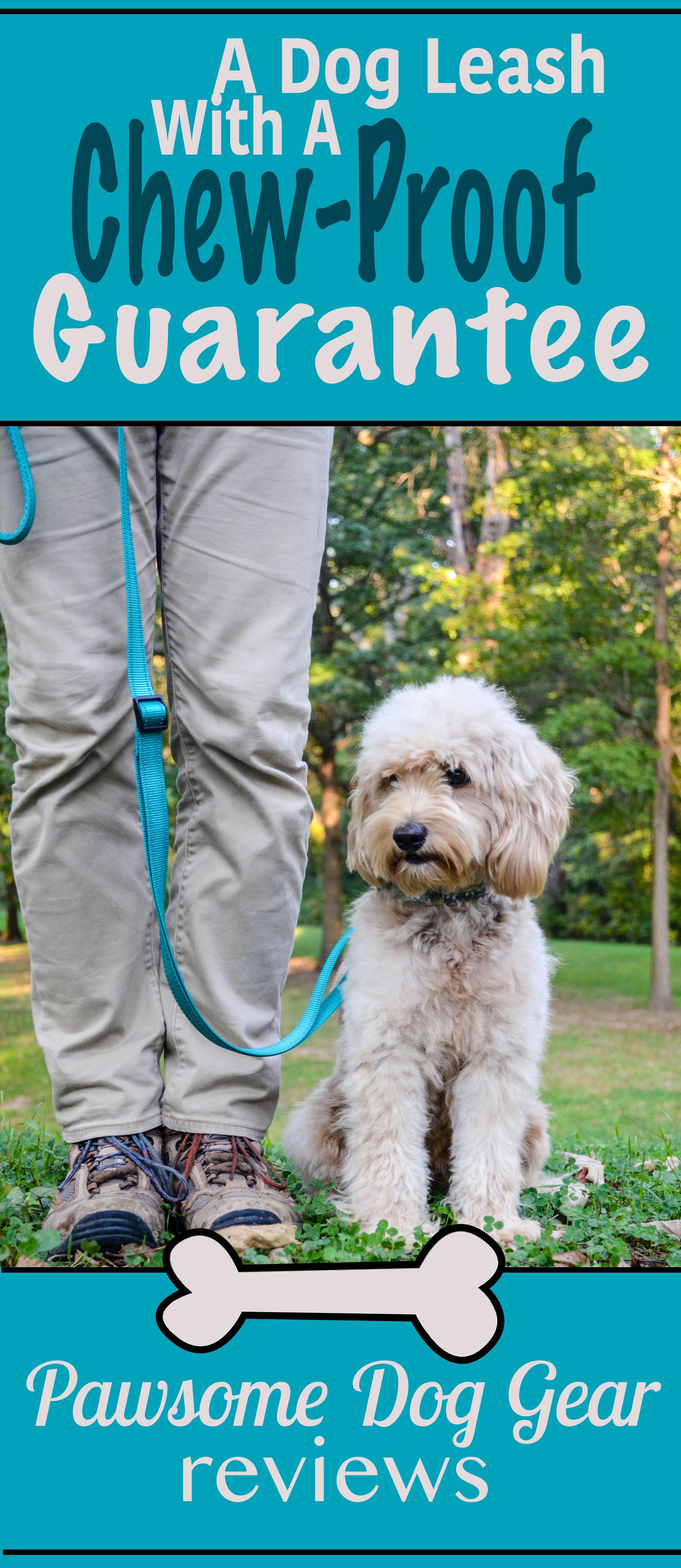 DexDog Adjustable Dog Leash Product Review Adjustable
