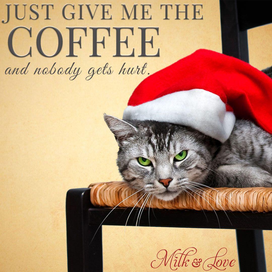 7 Funny Christmas Memes To Make You Laugh Christmas Memes Funny Christmas Memes Christmas Humor