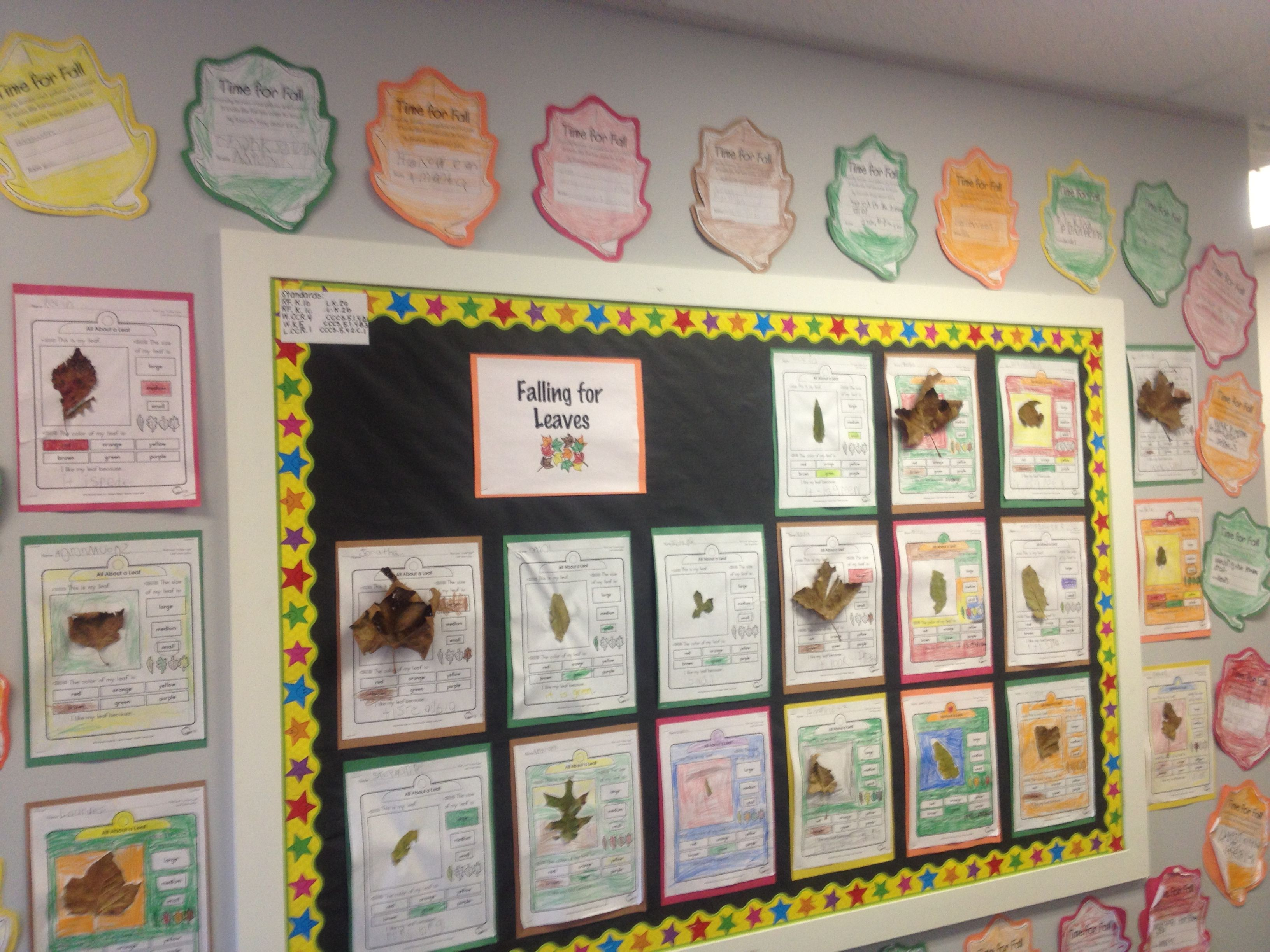 A Leaf Investigation And Students Stating Their Favorite
