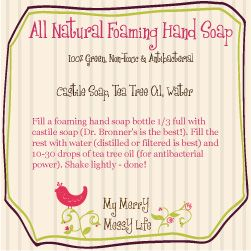 Homemade All-Natural Foaming Hand Soap with Free Printable Label