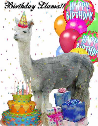 Qi7uf6tmxppwka3csa9ohuzko1 400 Jpg 400 510 Pixels Happy Birthday Llama Happy Birthday Wishes Cake Birthday Wishes Funny