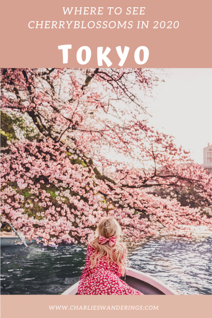 The Best Cherry Blossom Locations In Tokyo In 2020 Cherry Blossom Japan Cherry Blossom Japanese Garden