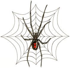 All About Art Tattoo Studio Rangiora Quality Work By Professional Artist Upstairs 5 Good Street Rangiora 03 310 Spider Web Tattoo Web Tattoo Tattoo Website