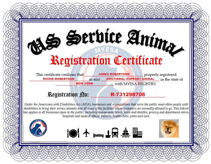 Register Your Animal Now My Esa Registry In 2020 Emotional Support Animal Service Dog Registration Emotional Support