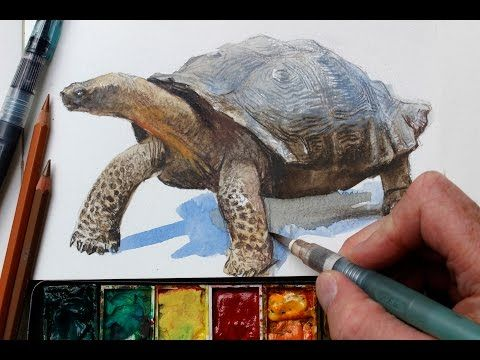 Watercolor Colored Pencils Fast Realistic Textures Youtube