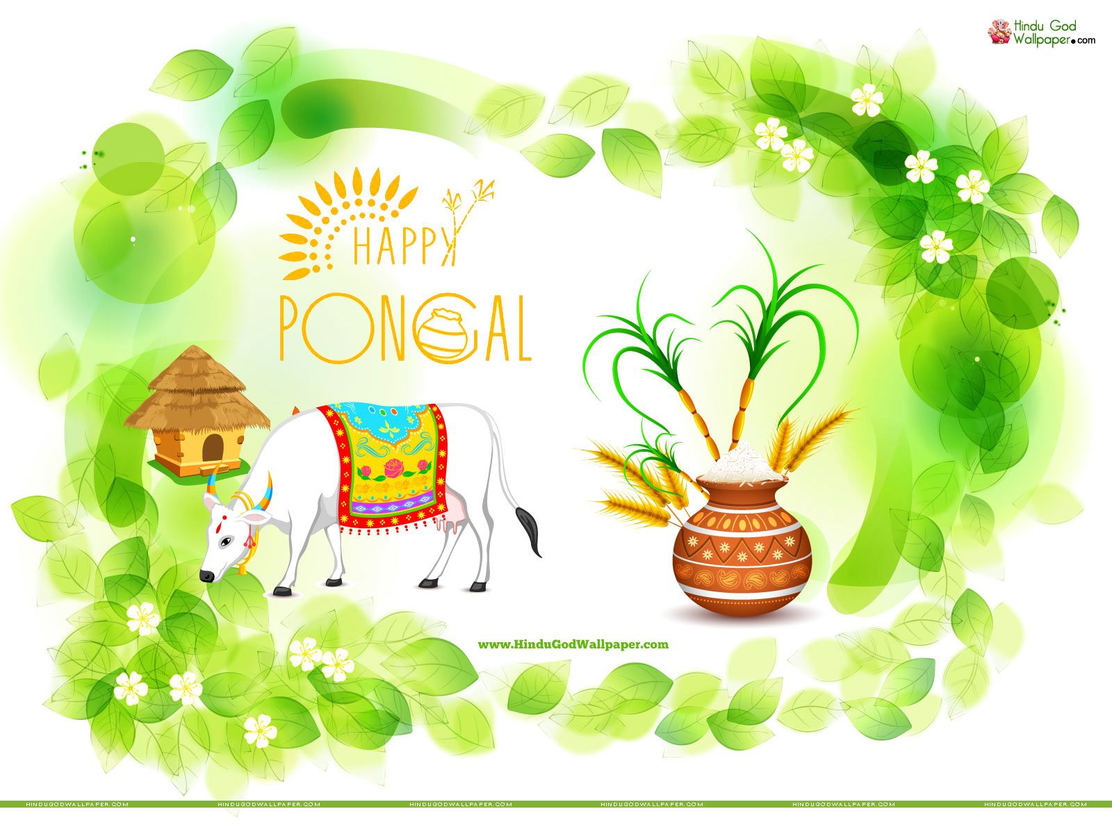 Pongal greetings wallpapers with wishes quotes pongal wallpapers pongal greetings wallpapers with wishes quotes m4hsunfo Gallery