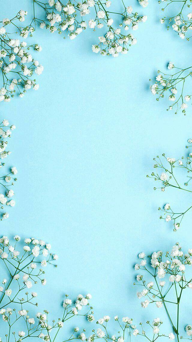Blue floral wallpaper | Papeis de parede azuis, Wallpaper