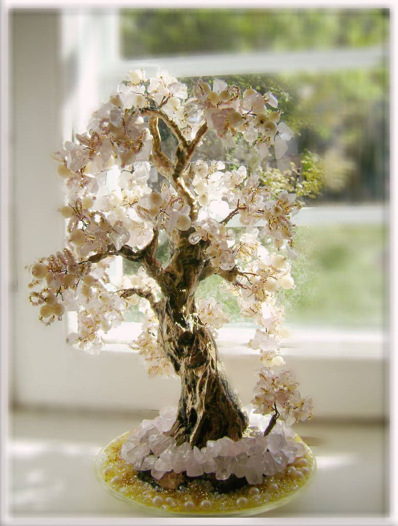 жемчужное дерево картинки отзывов отдыхе