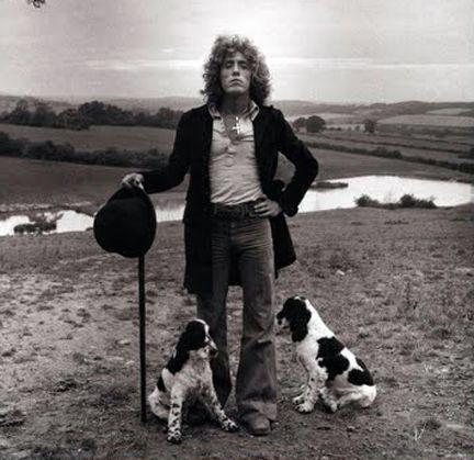 Roger Daltrey | Springer spaniel puppies, Roger daltrey, Spaniel puppies