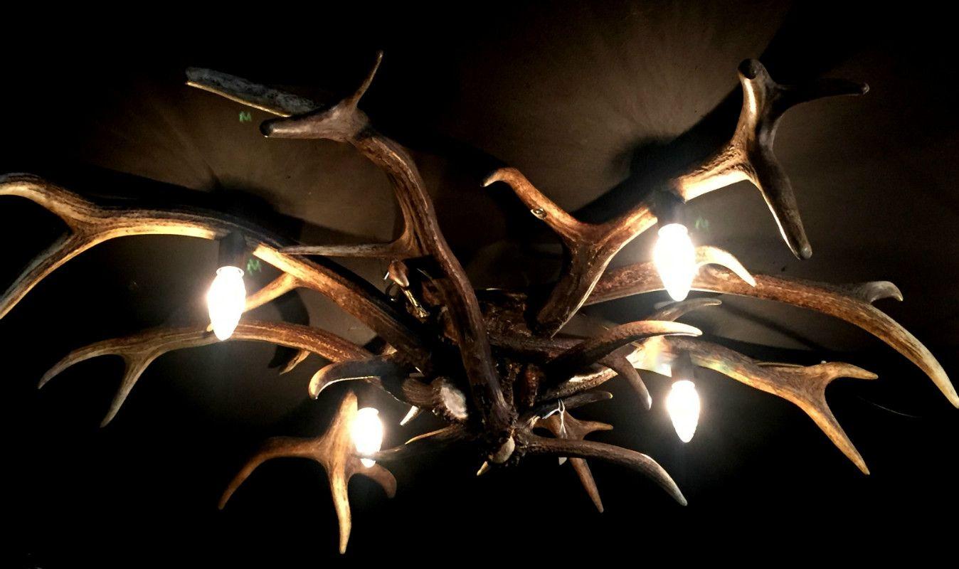 deckenleuchte hirschgeweih geweih lampe geweih leuchter geweih deko landhaustil wohnen. Black Bedroom Furniture Sets. Home Design Ideas