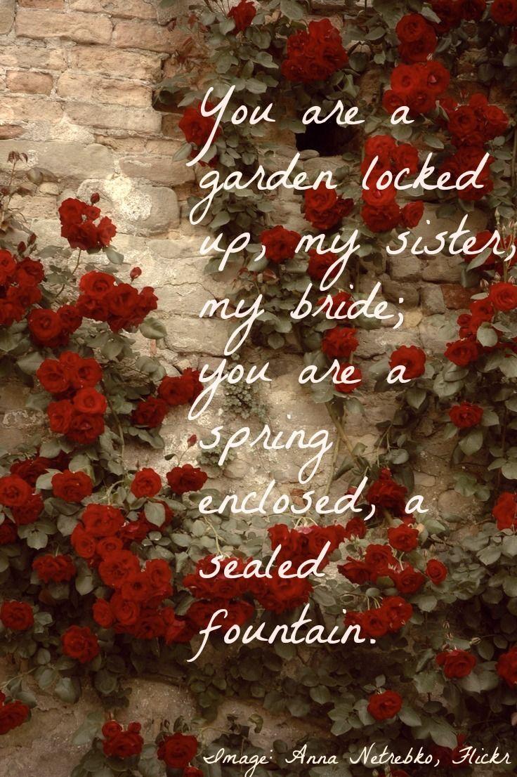 Song of Solomon 4:12 Secret Garden | SONG OF SONGS | Pinterest ...