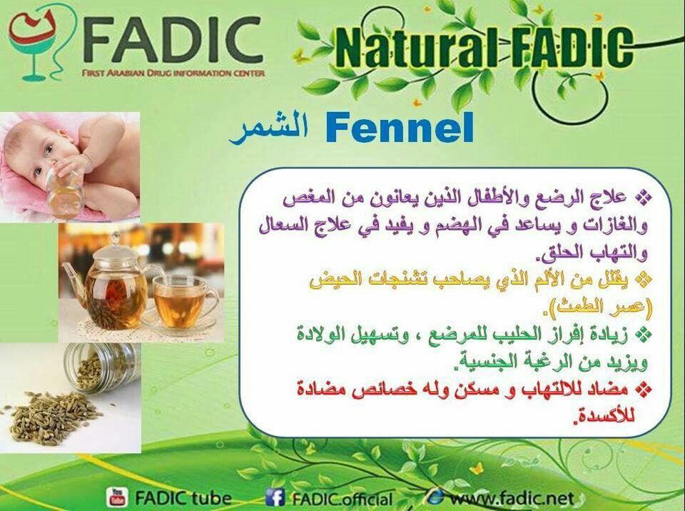 فوائد الشمر Health Healthy Life Food