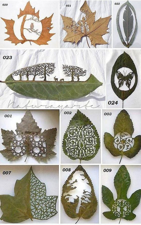 Photo of Lovely Leaf Cutting Art To Let The Artist In You Loose – Bored Art