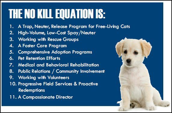 Support Local No Kill Shelters And Rescues Winnebago County No
