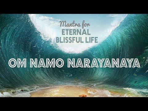 Vinyasa Flow Yoga Opening Progressive Namaskar A Youtube Vinyasa Flow Yoga Vinyasa Vinyasa Flow
