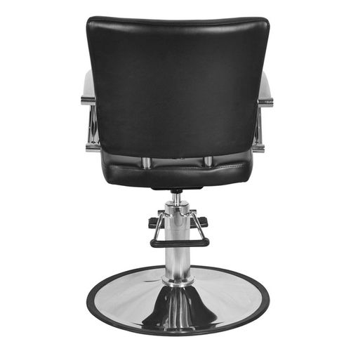 Salon Chair Back View Salon Chairs Chair Furniture Design Chair