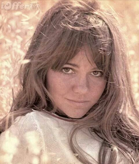 Young Hot Sally Field
