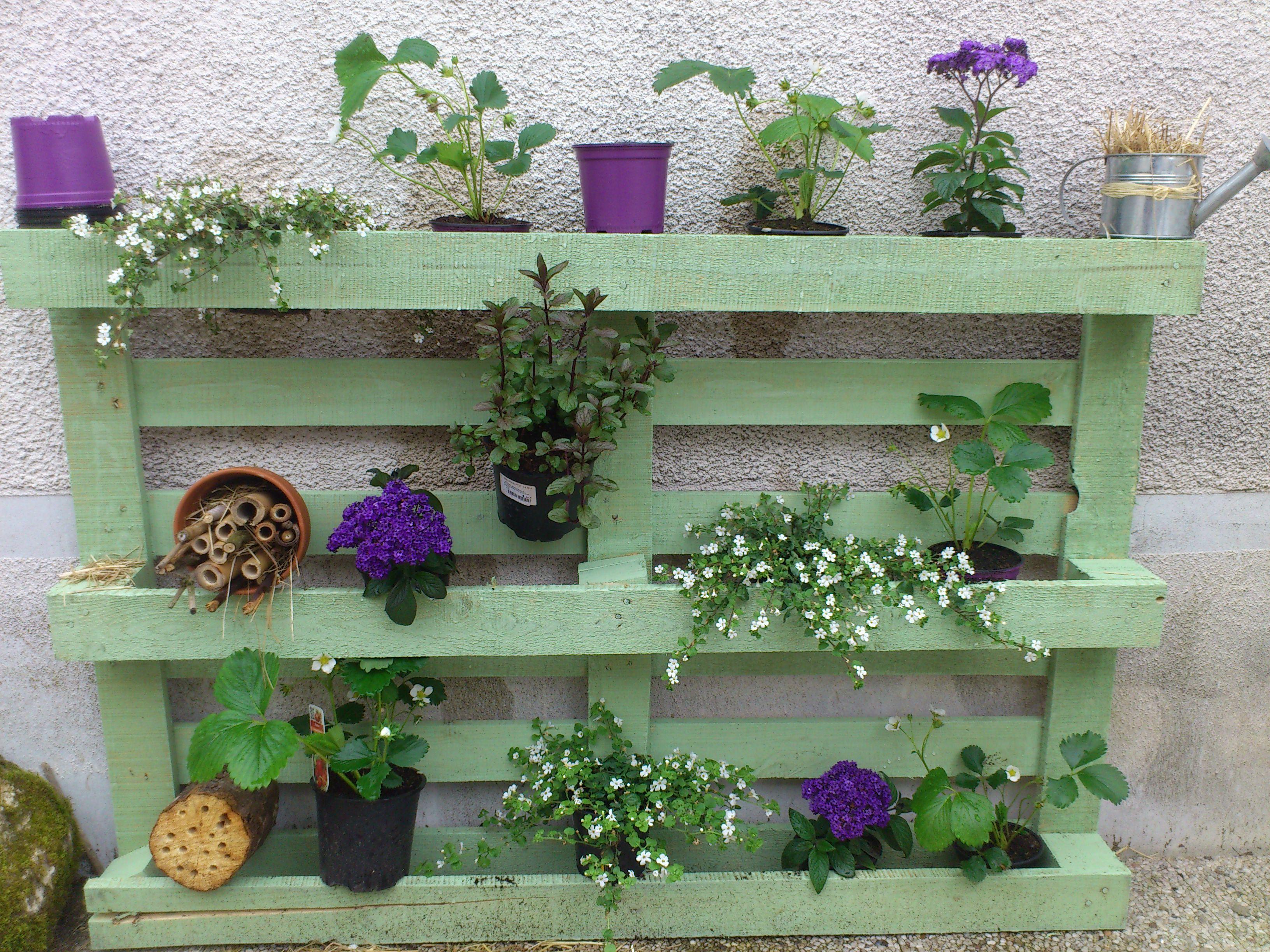 palette fleurie pour le jardin jardin herb garden pallet diy pallet vertical garden et herb. Black Bedroom Furniture Sets. Home Design Ideas
