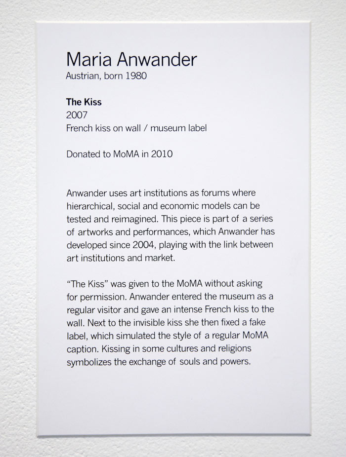Maria Anwander The Dream Being Exhibition Display Design Gallery Artwork Wall Text