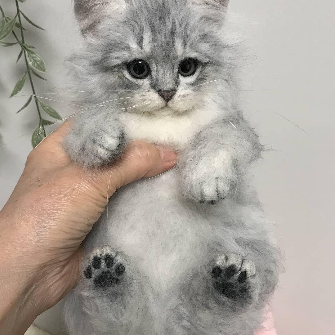 Felnyandes Felt Wool Needles Needlefelt Cat Wool Handmade Doll Kitten Persian Chinchilla Cute Cinchil Felt Animals Felt Cat Needle Felted Animals