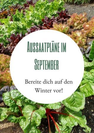 Aussaatpläne im September: Bereiten Sie sich auf den Winter vor! – Haus und Bett   – Aussaatkalender