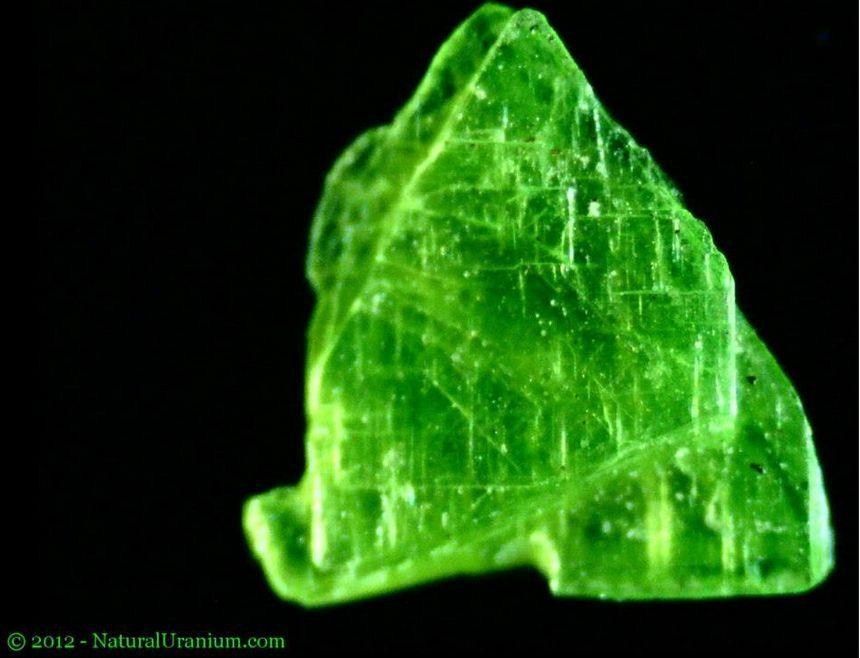 Kryptonite Autunite Uranium Under Long Wave Uv Light Is