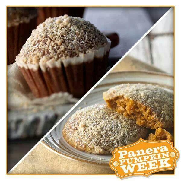 Pumpkin Muffin Or Pumpkin Muffie. Panera Is The Best
