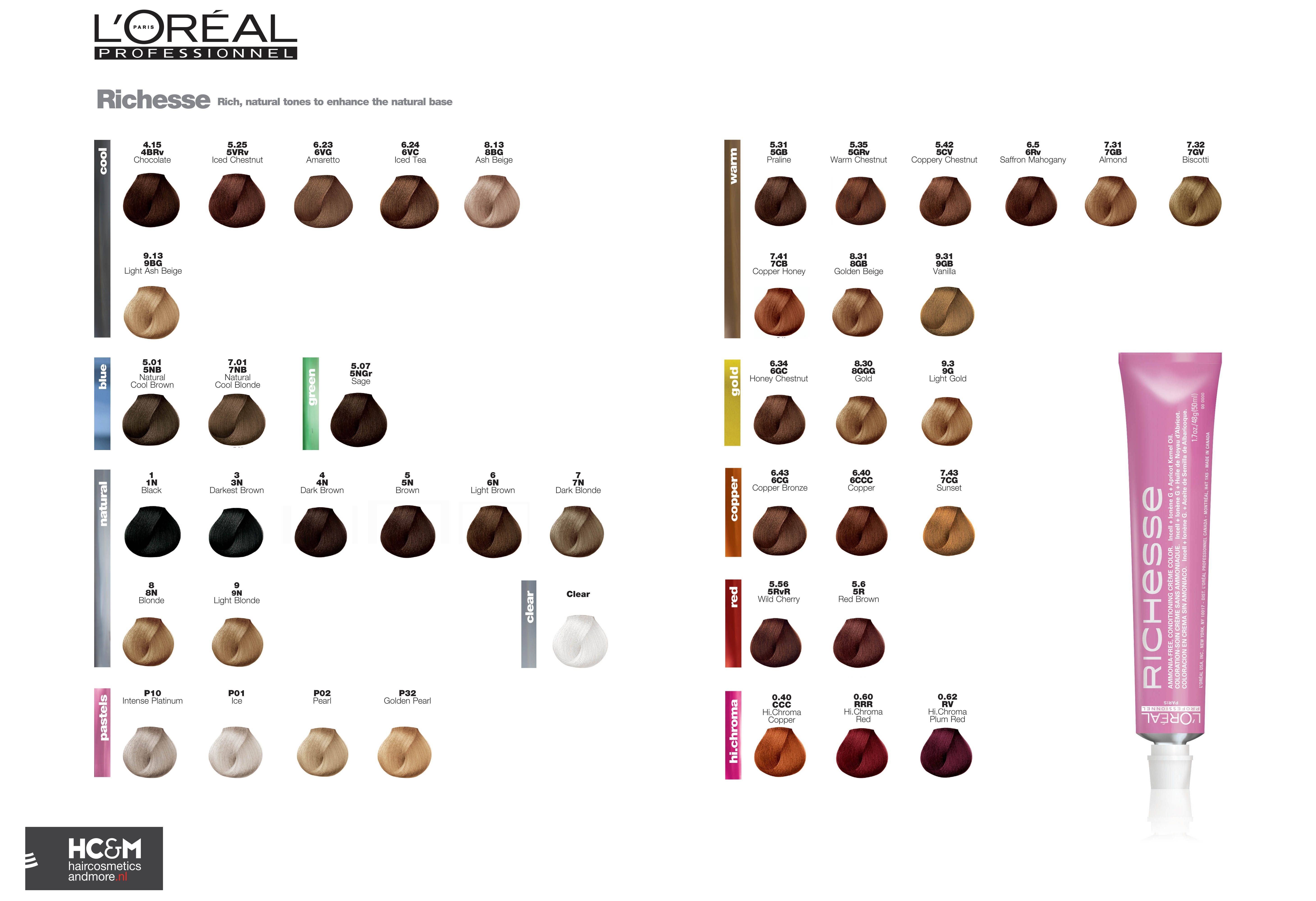 Loral professionnel richesse color chart loral loral professionnel richesse color chart nvjuhfo Images