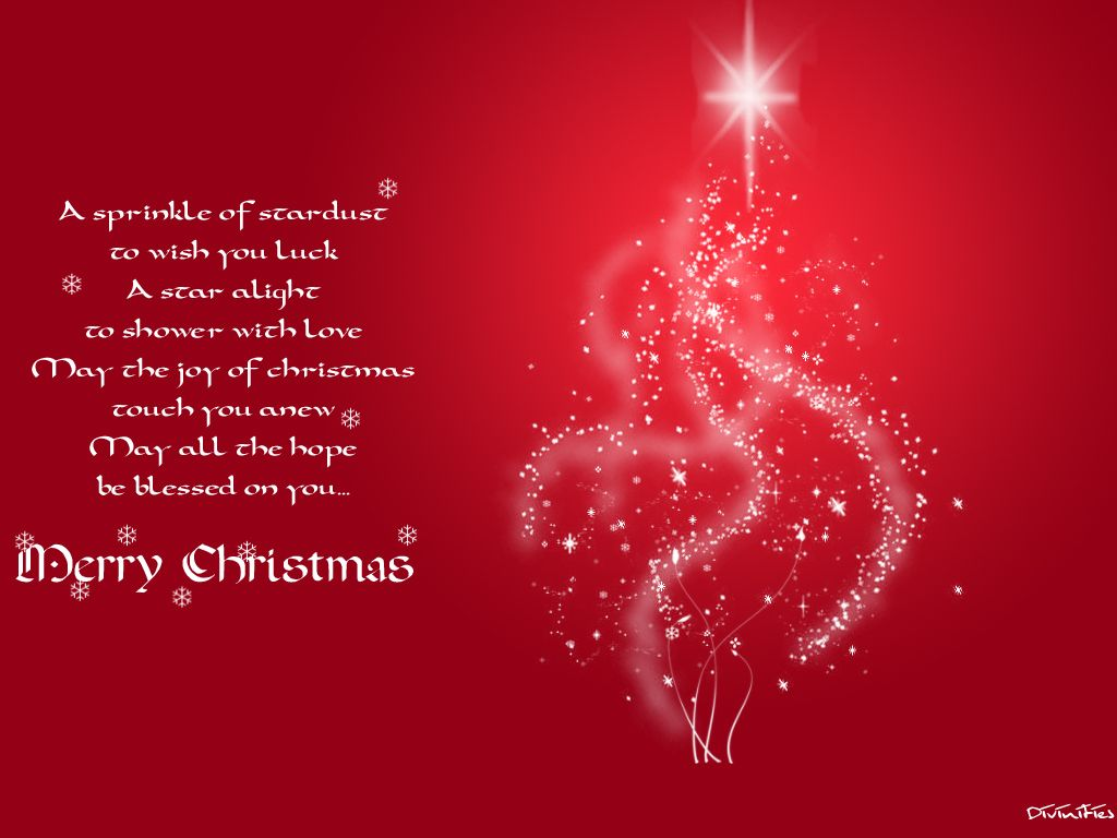 Its Christmas Time To Celebrate All The Blessings Of The Holy