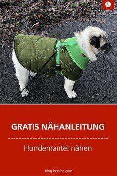Photo of Coser un abrigo de perro – instrucciones para regalos y construcción de patrones