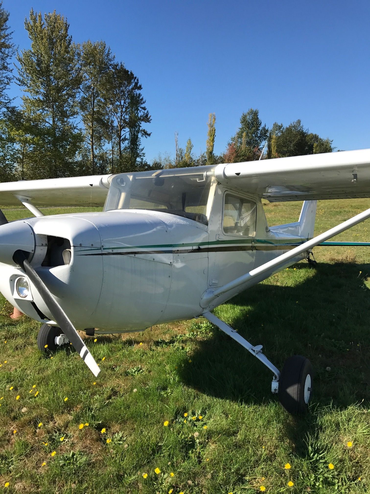 1975 Cessna 150M Taildragger for sale in (S50) Seattle, WA USA