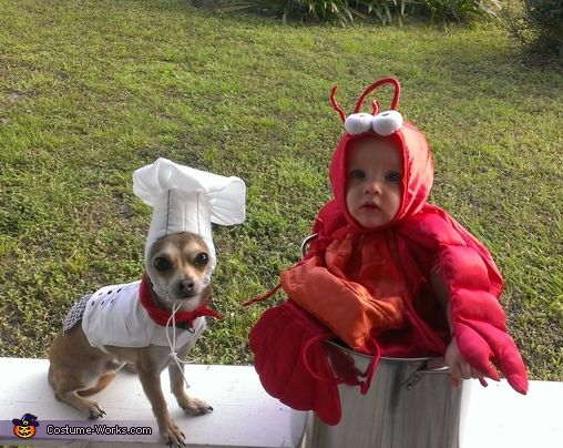 Little Lobster and Chef - Halloween Costume Contest at ...
