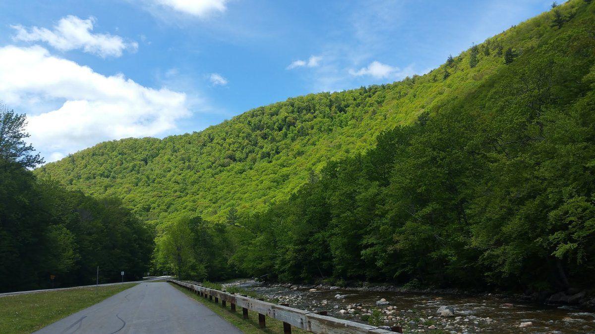 Scenic Savoy Mountain Campground In Massachusetts | Best ...