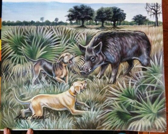 Sebring Fl Hunting Art Hog Dog Hunting Dogs