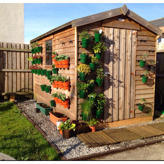 Our Shed.Home To A Vertical Vegetable Garden And Herb